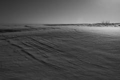 vacant planets (Mindaugas Buivydas) Tags: lietuva lithuania bw winter february cold frost ice snow minimal minimalism ventėsragas capevente kuršiųmarios curonianlagoon nemunodeltosregioninisparkas nemunasdeltaregionalpark mindaugasbuivydas delta nemunasdelta songofafavoriteband badlands badlandsseries