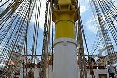 El Velero Rumano Mircea es un velero del tipo barca de tres mástile  (55) (javier_cx9aaw) Tags: elero rumano mircea