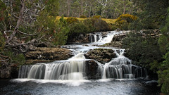Pencil Pine Falls (Alan McIntosh Photography) Tags: landscape waterfall nature water cascade cradle mountain flow creek tasmania