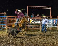 DSC_4280-Edit (alan.forshee) Tags: rodeo horse cow ride fall buck spin twirl bull stallion boy girl barrel rope lariat mud dirt hat sombrero