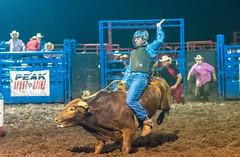 DSC_4535-Edit (alan.forshee) Tags: rodeo horse cow ride fall buck spin twirl bull stallion boy girl barrel rope lariat mud dirt hat sombrero