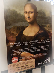 A Common Enemy (amarilloladi) Tags: galleriadellaccademia emotional loss cancersideeffects 7dwf pictureinsideapicture monalisa cancer florence crazytuesdaytheme
