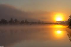another universe (zora_schaf) Tags: sunrise sonnenaufgang morgenlicht light morning eisweiher see weiher anotheruniverse space reflection spiegelung fog mist nebelstimmung bayern bavaria icking zoraschaf