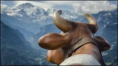 _SG_2017_06_0000_IMG_6825 (_SG_) Tags: schweiz schweizer berge berg alpen suisse switzerland alps mountain peak view interlaken harder kulm harderkulm funicular bernese berner oberland unterseen canton bern harderbahn emmental brienzer see lake brienz