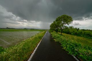 Heavy rain ahead of the road.