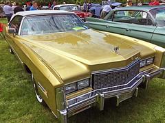 Cadillac Day (5) (AntyDiluvian) Tags: boston massachusetts brookline larzanderson automuseum vintagecars vintageautos vintageautomobiles cadillacday lawn 1976 eldorado gold