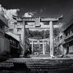 Suwa Taisha (Bill Thoo) Tags: nagasaki japan suwataish suwa taisha suwashrine shrine urban monochrome blackandwhite bnw bw 長崎市 諏訪神社 sony a7rii ilce7rm2 samyang 14mm