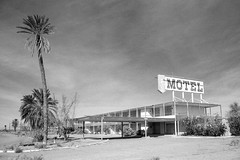vacancy. salton sea, ca. 2000. (eyetwist) Tags: eyetwistkevinballuff eyetwist saltonsea desert california motel abandoned gone nikon n90s kodak tmax 100 tmx nikonn90s kodaktmax100tmx sigma2470f28exdg scansfromthearchives ishootfilm ishootkodak film analog analogue filmtagger 35mm blackwhite bw contrast monochrome northshoremotel bulldozed fadingamerica derelict ruins abandonedcalifornia lonelydesert paradiselost 2000 lonely demolished arid sand californiadesert imperialvalley desolate empty roadsideamerica americana usa road roadtrip vanished americanwest sign type typography building architecture hotel palmtree landscape tbt northshore salton sea