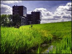 Zalmplaat (glessew) Tags: zalmplaat hoogvliet rotterdam dijk dike nederland