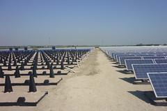 Impianto fotovoltaico nell'ex discarica del Comune di Goro (3)
