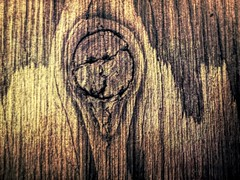 Spirit in the Wood (clarkcg photography) Tags: macromondays pareidolia face nature wood woodgrain eyes nose mouth head arm good coat kenny southpark whokilledkenny