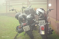 Witches & Wizards' brooms v. 2.0 (Maria Luiza S) Tags: motorcycles byke fog witchesboomsv20 plates