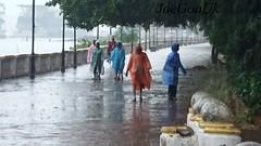 Raining 31.5.17 (joegoauk73) Tags: raincoats promenade joegoauk goa rain rains panjim