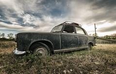 Jamais quatre sans trois... (ElfeMarie) Tags: voitures car cars voiture peugeot 403 rusty abandoned abandonnée lost forgotten oubliée urbex exploration extérieur outside oldtimer