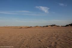 Deserto del Sinai a Nabq (Martinaway) Tags: sharmelsheikh egypt desert sinai nabq travel