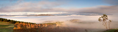 Canberra (Aurorajane) Tags: canberra act pano panolplates nationalcapital politicalcentre water fog terrain landscape outdoors morning