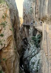 Caminito del Rey-Paraje Natural.Ardales-El Chorro-(Málaga) (lameato feliz) Tags: caminitodelrey elchorro rocas desfiladero