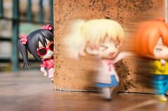 Feel like a real idol (Alix Real) Tags: nendo nendoroid gsc goodsmile good smile company figure figurine toy anime manga kawaii moe character love live school idol project kin iro mosaic alice cartelet rin hoshizora nico yazawa