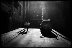 untitled (Albion Harrison-Naish) Tags: sydney newsouthwales australia sydneystreetphotography streetphotography albionharrisonnaish iphoneography mobilephotography iphone iphonese hipstamatic blackeyssupergrainfilm lowylens unedited straightoutofcamera sooc jollyrainbow2xflash
