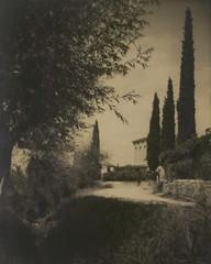 Italienische Reise (Don Claudio, Vienna) Tags: exner zypressen toskana vintage strada strase weg liebesgedichte suhrkamp