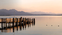 Chiemsee - (rotraud_71) Tags: germany bavaria chiemsee chieming jetty anlegesteg water mountains eveninglight ducks sunset pier