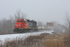 Why We Love Summer (Charles Warczinsky) Tags: freight train canadian national intermodal winter snow squall gp382 gtw