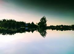 IMG_20170524_194406 (bananarama87) Tags: london uk northolt huawei nexus 6p water reflections birds lake swan phone photography