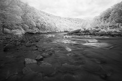 Cheat River Narrows (DRCPhoto) Tags: digitalinfrared irconverteddslr canon 5d cheatriver westvirginia ir