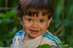 Diego - 1 anos e 3 meses (mcvmjr1971) Tags: 14x 2017 d7000 ex nikon brasil f28 lenssigma macro mmoraes niterói pendotiba regiãooceância riodejaneiro sigma150mm sigmateleconverter vilaprogresso