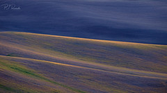 Palouse Color III (PJ Resnick) Tags: 2017 pjresnick palousewa perryjresnick pjresnickgmailcom pjresnickphotographygmailcom ©2017pjresnick ©pjresnick nature light fuji fujifilm atmosphere atmospheric digital shadow texture shadows yellow angle perspective naturallight xf fujinon resnick outdoor green brown orange rectangle rectangular color colour sky blue xpro2 fujifilmxpro2 landscape washington filmsimulation fujinon55200mm 55200mm provia pink sunrise purple