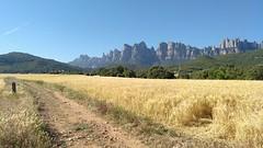 Pla de les Botges - Montserrat Nord