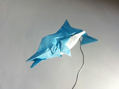 Dolphin - Fumiaki Kawahata (Kiên Bá) Tags: dolphin fumiaki kawahata origami blue white fish