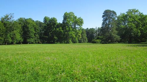 Výhled po parku