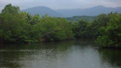 Backwaters (Midnight Believer) Tags: buffbayjamaica caribbean tropical westindies backwaters scenic rural vista