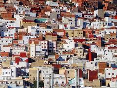 Tétouan Favelas (Yassine Abbadi) Tags: favela favelas tetouan tetuan morocco marruecos maroc habitation medina montagne moutain mosque mosquee