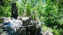 E60, Flatzer Wand, SG C/D (ckrieh) Tags: klettersteig flatzerwand naturfreundehaus
