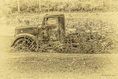 Parked (Back Road Photography (Kevin W. Jerrell)) Tags: oldvehicles old trucks backroadphotography daysgoneby dilapidated dirtroads nikond60 abandoned rusty sepia antique
