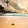 Runaway coconut (SamppaV) Tags: coconut phuket thailand stranded runaway leefilter gnd 06 cpl sunset seascape coconuttree sea color colours asia reissussa beach sealife wave movement longexposure neutraldensity polarizer