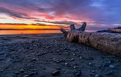 Good Morning (Paul Rioux) Tags: bc vancouverisland colwood westcoast westshore esquimalt lagoon beach log rocks morning daybreak dawn sunrise clouds prioux