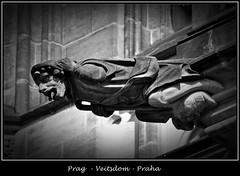 Gargoyles - 13 (fotomänni) Tags: prag praha prague veitsdom gargoyles wasserspeier steinfiguren skulpturen skulptur sculpture kunst schwarzweis blackwhite noirblanc gargouille manfredweis