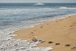 Leaving footprints and taking memories
