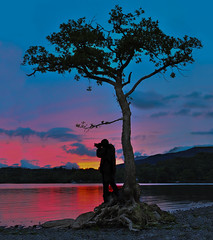 Shooting from the Lone Tree.. at Milarrochy Bay (Loch Lomond) (Imagine8 Photography) Tags: milarrochy milarrochybay lochlomond thetree sunset bluehour loch eatenbymidges scotland tree water imagine8photography