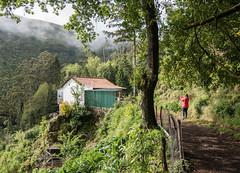 Madeira-P1020628-071 (Per Dahlgren) Tags: madeira semester holiday private