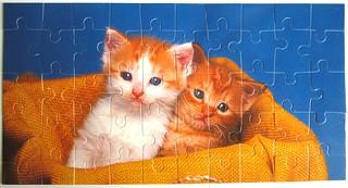 2 Kätzchen (Judy Reinen)