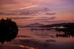 Ben Lomond from Drumkinnon Bay (Brian Travelling) Tags: benlomond drumkinnonbay lochlomond argyllshire scotland scenery scenic maidoftheloch pentaxkr pentax pentaxdal peaceful loch