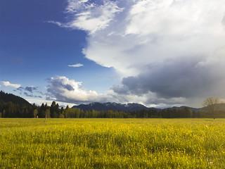 © Blue Sky Clouds Meadow Field Spring – Blauer Himmel Wolken Wiese Feld Frühling Bayern