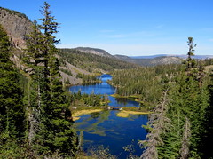 Mammoth Lakes , Blue plus Green equals Bliss (moonjazz) Tags: lakes blue nature california photography landscape mammothlakes trees pine green color vista viewpoint travel sierranevada eastern high pristine bluest pure water air fresh environment hiking vacation summer wilderness