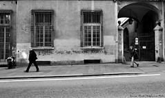 Il sapere serve per prendere posizione - Knowledge is necessary to take position - El saber serve para tomar posicion (Dedalomouse Photos) Tags: graffiti gente genova liguria italia italy tommaso tommasoolmeda travel europa europe people persone city città citta ciudad calle street streetphoto strada strade metropolis bianconero bw bn finestra ventana windows il sapere serve per prendere posizione knowledge is necessary take position el saber para tomar posicion