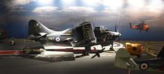 Fleet Air Arm Museum Yeovilton Somerset 16th June 2017 (loose_grip_99) Tags: yeovilton somerset england uk faa museum fleet air arm aircraft rnas plane flying fairey gannet carrier preservation cold war warplanes cod4 xa466