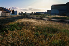 What's to Stop Us? (rosenunezsmith) Tags: lanecounty goldenhour builtlandscape oregon sunset atmosphericconditions clouds grass america pacificnorthwest railroadtrack eugene field pnw upperleftusa fields magichour rose smith